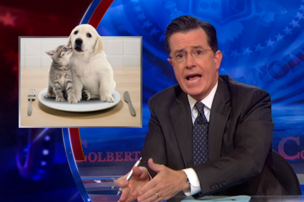 """""""Dogs and cats have to die"""": Stephen Colbert sums up latest insane NRA crusade - Salon.com"""