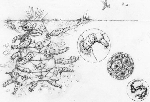 oxford-alien-drawings
