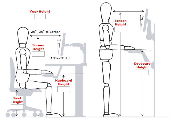 incredible-standing-desk-ergonomics-standing-desk-guide-measurements-examples-and-benefits