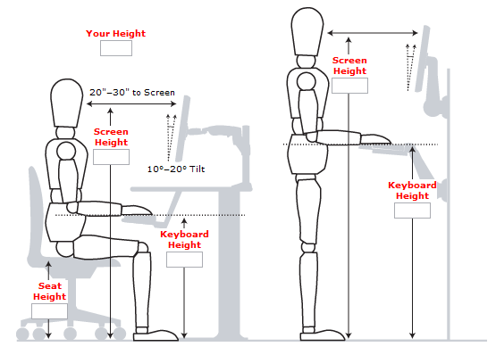 incredible-standing-desk-ergonomics-standing-desk-guide-measurements-examples-and-benefits