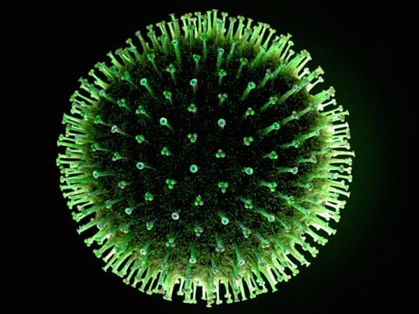 Flu virus 1 570fe65380ecc6605d4c8b96e2abea6299b25c36 s1600 c85