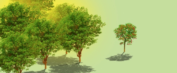 Treesexism 1280x533