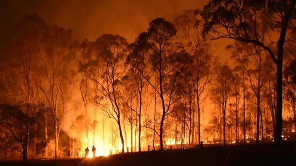 611530 australian wildfires